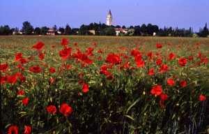Aquileia  campanile