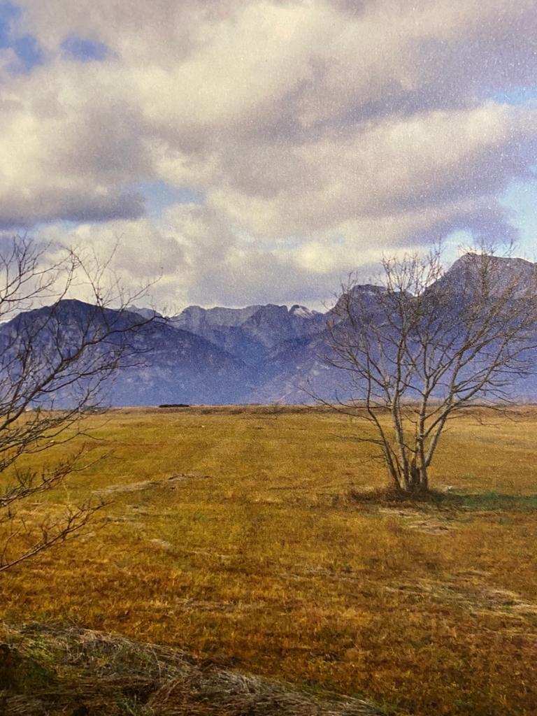 I #Prati della zona dei #Magredi nella provincia di #Pordenone